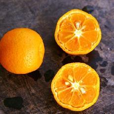 Citrus reticulata  'Sunki'
